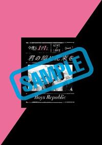 BR_news _sample