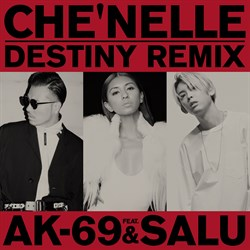 Destiny _Remix _S