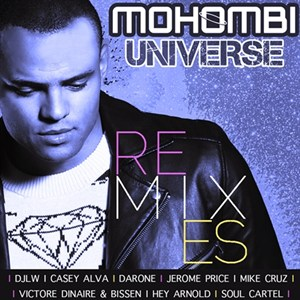 Universe Remixes COVER 300