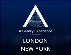 A Gallery Experience Supported by Rhizomatiks