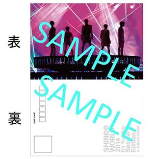 SHINee _postcard _sample