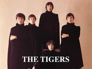 tigers-a